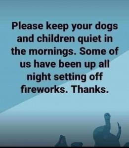 Fireworks Meme